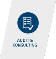 Audit and Consulting